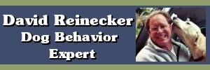 David Reinecker